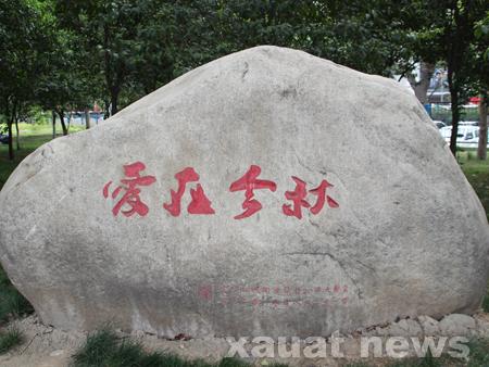 校园石头记(图)